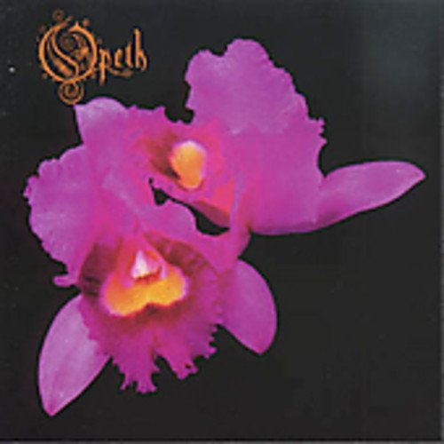 Orchid ()