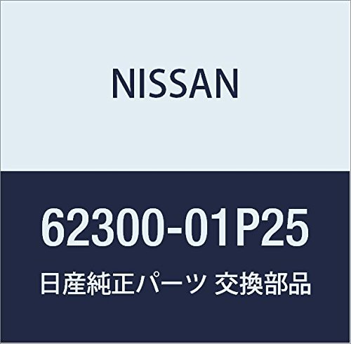 Genuine Nissan Parts 62300-01P25 Grille Assembly