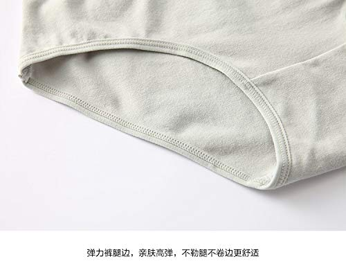 CLNE/&KU Womens Flash Stretchy Cotton Low-Waisted Underwear