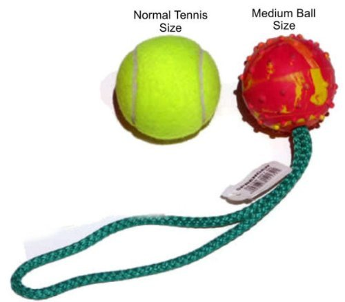 Bundle of 6 Medium Herm Sprenger Rubber Balls with Rope Handle