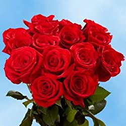 50 Fresh Cut Red Roses for Valentine's Day | Charlotte Roses | Fresh Flowers Express Delivery | The Perfect Valentine's Day Gift