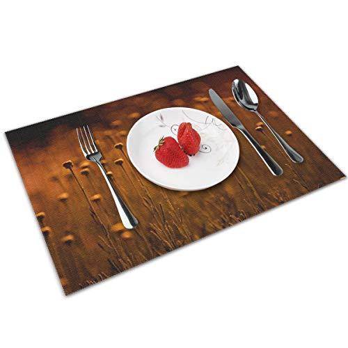N/A Flowers Harmony - Manteles individuales de PVC, lavables, de bambu, juego de 4 unidades, resistentes para mesa de cocina