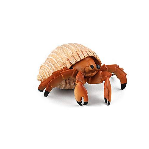 - QTFHR Sea Animals Models Figurines Toys Simulated Sea Life Animals Model Action Figure (Hermit Crab)