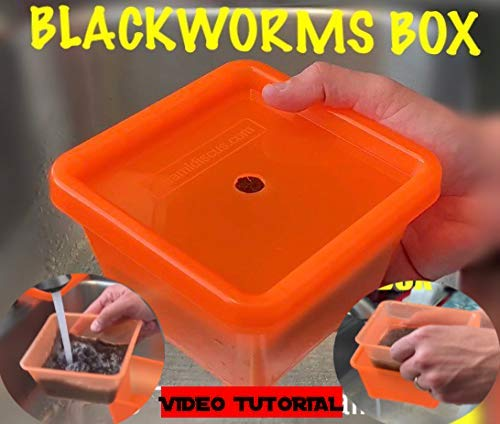 (Live Blackworms Box Keeper Wormbox Stackables Discus Altums Tropical Fish Worm Container Food Supplies Pet)
