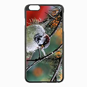 iPhone 6 Plus Black Hardshell Case 5.5inch - sparrow branch needles Desin Images Protector Back Cover