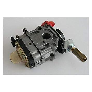 Stiga 1230540300 - Carburador desbrozadora: Amazon.es: Jardín
