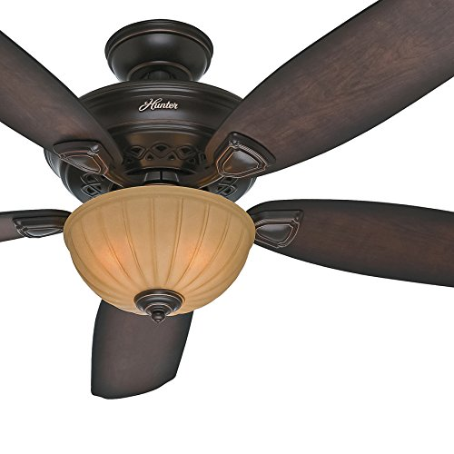 Hunter Fan 56 inch Traditional Ceiling Fan in Onyx Bengal with Light Kit,5 Blade (Certified Refurbished)