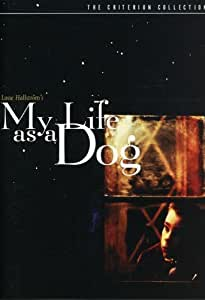 My Life as a Dog (The Criterion Collection)