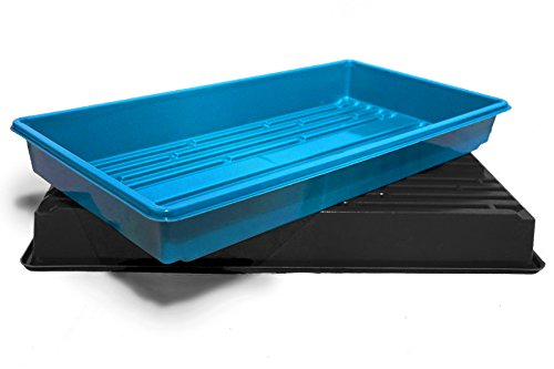Made in USA Growing Tray for garden seeds, Microgreens, Wheatgrass (No Drain Holes) (5, Random) by Thunder Acres