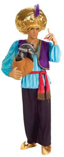 Forum Novelties Snake Charmer Costume, Blue/Purple, One (Sultan Costumes For Adults)
