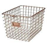 Spectrum Diversified Copper Display Basket, 9'' x 13'' x 8''