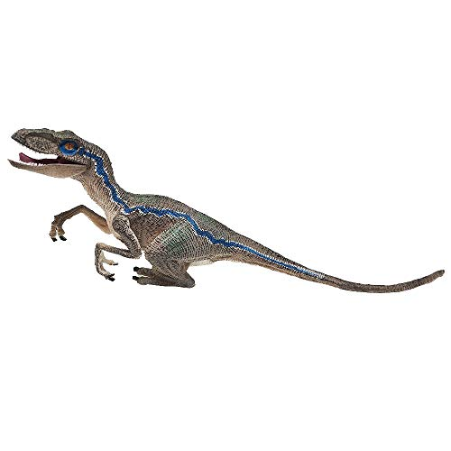 Blue Velociraptor Dinosaur Action Figure Animal Model Toy Collector from ABASSKY
