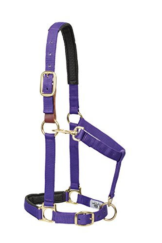 Weaver Leather Padded Breakaway Adjustable Chin and Throat Snap Halter, 1