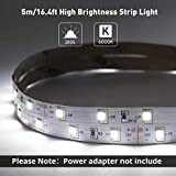 LE 12V LED Strip Light, Flexible, SMD 2835, 16.4ft