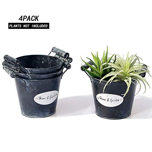 Revolumini Succulent Pots Metal Cute Succulent Planters Cactuc Planters Flower/Plant Pots/Container with Drainage Hole(NO-9)