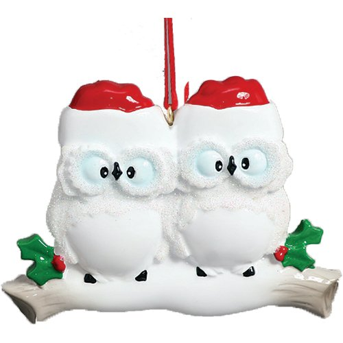 Personalized Wise Owl Family of 2 Christmas Ornament for Tree 2018 - Couple Sibling Friend in Santa Hat on White Branch - Cute Winter Holiday Glitter Tradition - Free Customization by Elves (Two)