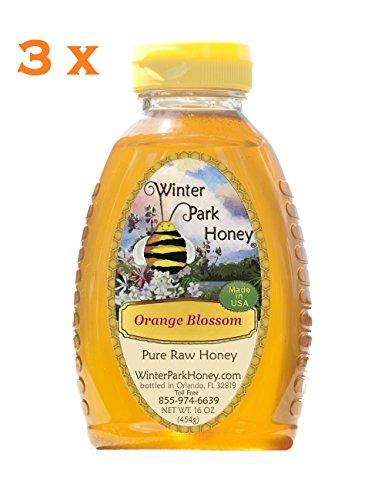 Orange Blossom Honey 48oz (Raw Honey - 3x16oz Winter Park Honey Orange Blossom) (Three Light Blossom)