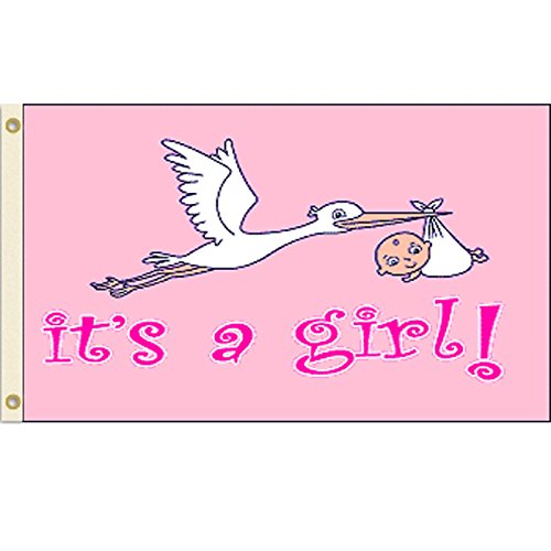 It's a Girl Flag 3x5 Polyester Flag