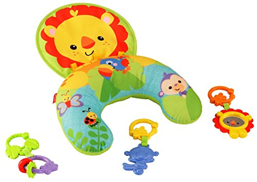 Fisher Price Y6593 Tummy Wedge