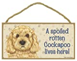 (SJT61989) A spoiled rotten Cockapoo lives here wood sign plaque 5