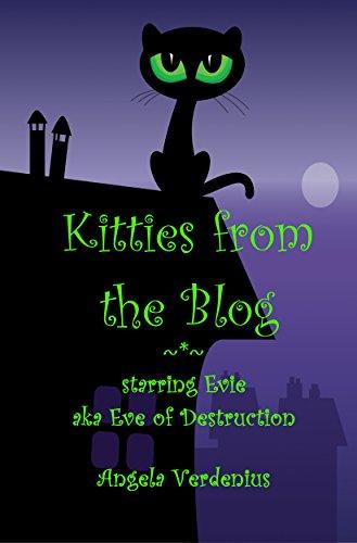 Kitties from the Blog: starring Evie aka Eve of Destruction