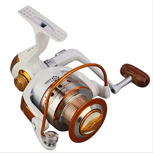 FELICIF Spinning Fishing Reel 12+1 Bearings Left Right Interchangeable Handle for Saltwater Freshwater Fishing with Double Drag Brake System (Size : 2000)