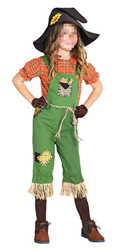 Ameyda Little Girls Child Scarecrow Costume