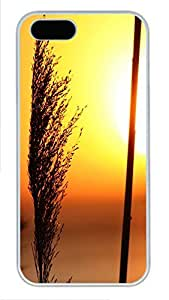 iPhone 5 5S Case Nature Grass Sun PC Custom iPhone 5 5S Case Cover White