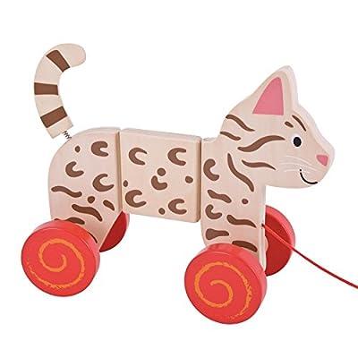 Bigjigs Toys Cat Pull Along: Toys & Games
