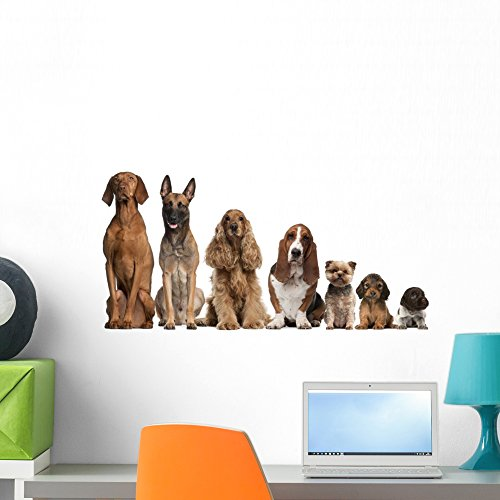 Wallmonkeys Group of Brown Dogs Sitting Peel and Stick Wall Decals WM304782 (24 in W x 10 in (Classroom Decor Themes)