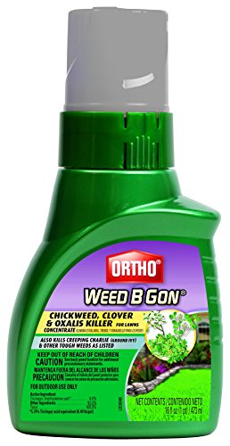 Ortho Weed B Gon Chickweed Concentrate Clover & Oxalis Killer for Lawn (Case of 6), 16 oz (B-gon Weed Ortho)