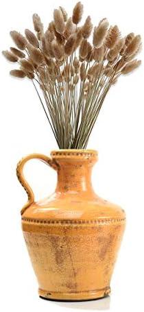 IMPULSE Luca Terra Cotta Vase, Terra Cotta Flower Pots