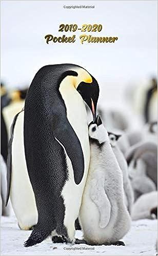 2019-2020 Pocket Planner: Nifty Emperor Penguin Antartica ...