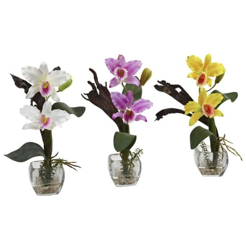 Nearly Natural - Mini Cattleya Orchid Arrangement (Set of (Mini Cattleya Orchid)