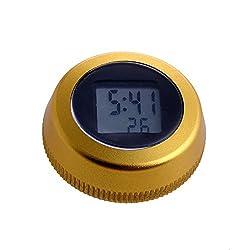Delight eShop Universal Waterproof Bike Bicycle LCD Digital Stopwatch Cycling Clock Sports New (Gold)