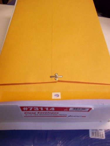 Ampad, 73114, Clasp Envelopes, 10