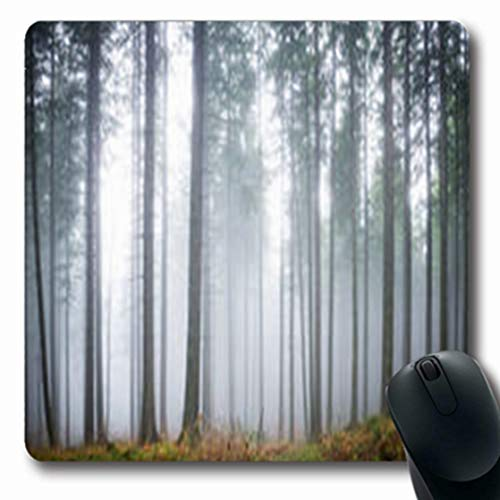 Pandarllin Mousepads Halloween Mysterious Fog Green Forest Pine Spooky Trees Nature Mood Parks Outdoor Oblong Shape 7.9 x 9.5 Inches Oblong Gaming Mouse Pad Non-Slip Rubber -