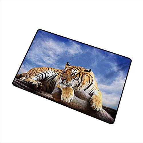 (duommhome Bedroom Doormat Safari Tiger Sitting on Wood Clear Blue Sky Wildlife Morning Stripes Predator Print W35 xL47 Machine wash/Non-Slip)