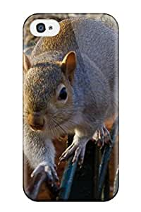 Iphone Case - Tpu Case Protective For Iphone 4/4s- Squirrel