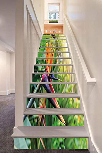 Plant 3D Stair Riser Stickers Removable Wall Murals Stickers,Close up Image of Strelitzia Reginae Bird of Paradise Flower Madeira Island Portugal Decorative,for Home Decor 39.3