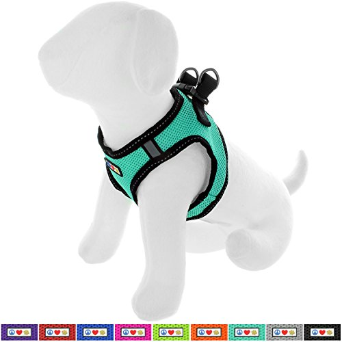 Pawtitas Pet Reflective Mesh Dog Harness