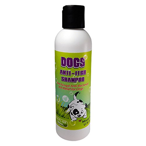 Ovante Dogs Anti - Itch Best Shampoo for Treatment and Management of Hot Spot, Skin Allergies, Rashes, Insect Bites. Medicated with Natural Oils, Safe for Dogs n Puppies - 6.0 Oz (Over The Counter Hot Spot Treatment For Dogs)