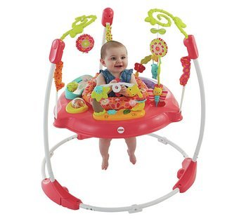 Pink Petals Jumperoo Fisher-Price