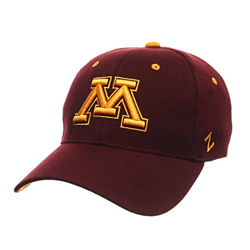 ZHATS NCAA Mens Tailored Stretch Cap