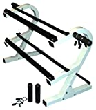 2 Tier 44'' Dumbbell Rack w/ 2 Olympic Adapters & 2 Pairs of 1'' & 2'' Spring Collars