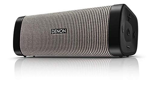 """(Denon DSB-250BT Envaya Portable Bluetooth 8.25"""" Speaker (Gray) - Lightweight, Waterproof & Dustproof   Up to 13 Hours of Battery Life   Hands-Free Phone Calling   Voice Compatibility with Siri)"""