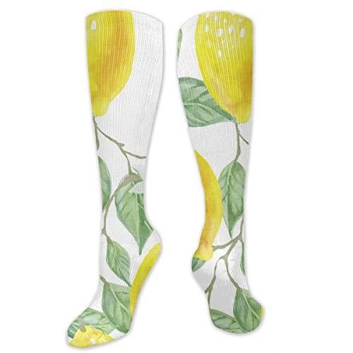 Lemon Peel Baseball (Compression Socks Watercolor Lemon Tree And Flowers Womens Winter Sock Holiday Tight Stocking For Girls Men Boys Teen)