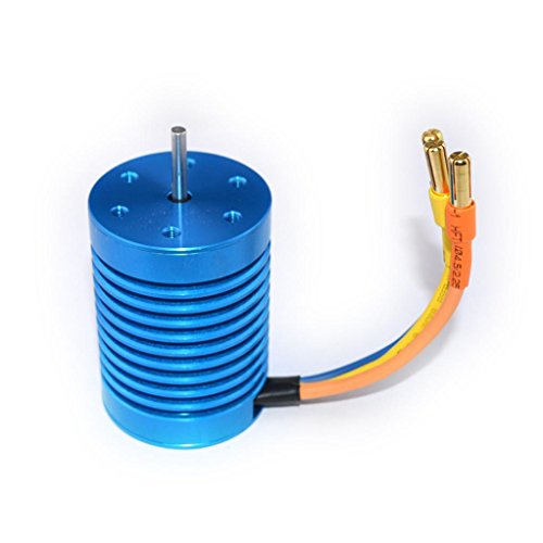 Slot Brushless Motor,Hongxin CYW-3650 3930KV Motor Sin Escobillas Para 1/10 Piezas Del Coche Del RC Racing Car,Motor Power Racing Electric Motor (Slot Car Runner)