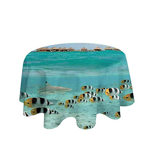 - Curioly Ocean Washable Tablecloth Blacktip Reef Shark Chasing Butterfly Fish Lagoon of Bora Bora Tahiti Dinner Picnic Home Decor D55 Inch Aqua Yellow and Black