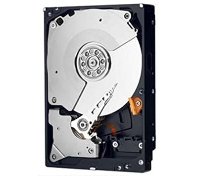 1Tb 7200Rpm 64Mb Sata/600, 3.5Inch, Caviar Black Series 2Nd Gen., 5 Year Warrant